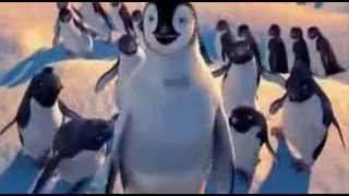 Punjabi Totay   Penguins Sardar   YouTube mpeg4