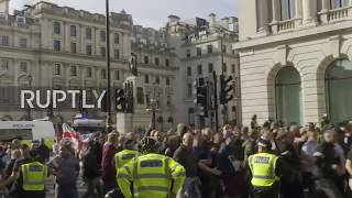 UK: Democratic Football Lads Alliance clash with police in London