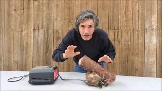 Bigfoot Penis Milked for its Sperm, Frozen since 1953