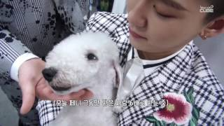 BTOB(비투비) - 비트콤 #18 (2017 드림콘서트 비하인드 )