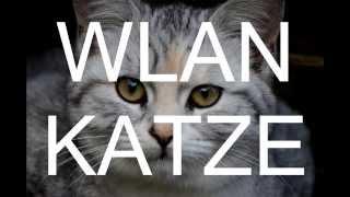 Die Wlan-Katze