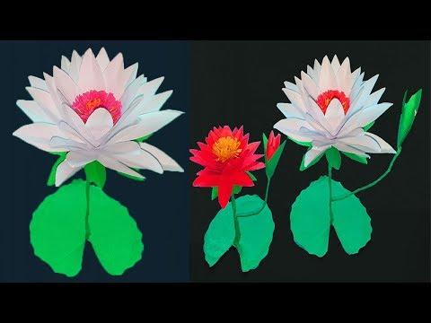 Xxx Mp4 How To Make Water Lily Paper Water Lily কাগজ দিয়ে শাপলা ফুল বানানো শিখুন 3gp Sex