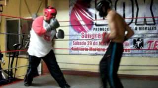 Javier La Cobra Mendoza