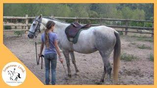 Inti y Brisa, 6º sesión: niña de 12 años espectacular desbrave de caballo salvaje, brida y silla