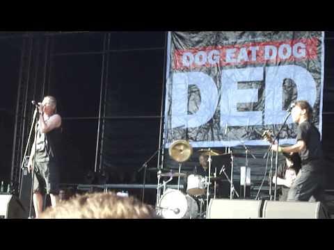 Xxx Mp4 Dog Eat Dog M I L F Live Masters Of Rock 2015 3gp Sex