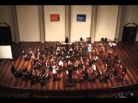 Yang Liu plays Sibelius Violin Concerto - 1st mov