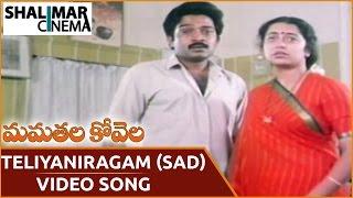 మమతల కోవెల సాంగ్స్ || Teliyaniragam (Sad) Video Song || Rajasekhar, Suhasini || Shalimarcinema