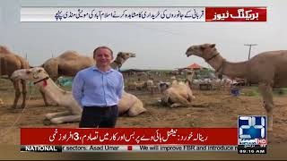 British High Commissioner Visits Cattle Markets Of Pakistan | 24 News HD
