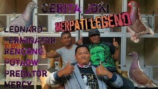 Cerita Joki di balik Merpati Legend