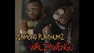 Diamond platnumz - walimwengu audio