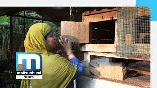 Sereena, Poultry Farmer, Sets Model For Housewives| Mathrubhumi News