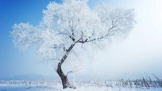 """FOUR SEASONS-WINTER""-Antonio VIVALDI-(Allegro Non Molto)-(Les Quatre saisons-L"