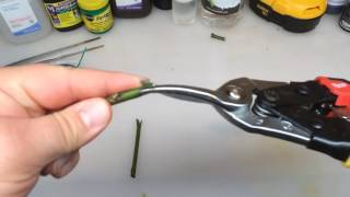 How To Grafting Roses V Cut Method   How to Grow Roses