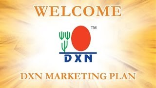 DXN Marketing Plan (Hindi Version)