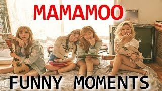 FUNNY MOMENTS ► MAMAMOO #1