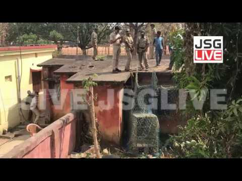 JSGLIVE.IN - Jsg Forest Officials rescued Sloth Beer from abandoned Quarter near Jharsuguda Sub-Jail