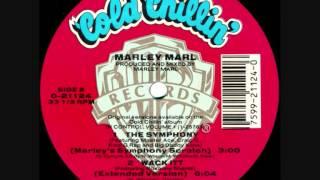 Marley Marl-The Symphony (Instrumental)