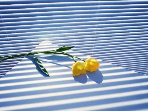 joymii-california-tenderness-onlayn