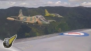Two Strikemasters And An L-39 Albatros - Jet Fighter Trainers