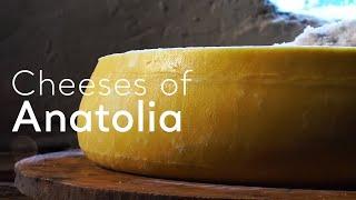 Turkey.Home - Cheeses of Anatolia