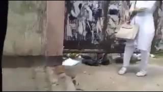 সিদ্ধেশ্বরী গার্লস কলেজের মেয়েরা এইডা কি দেখাইলো   পুরাই মাথা নস্ট