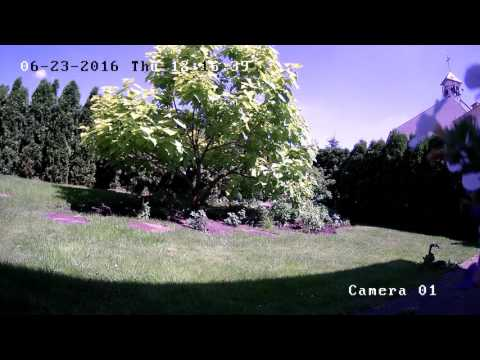 Kamera HIKVISION Model DS-2CD2132F-I-dzień