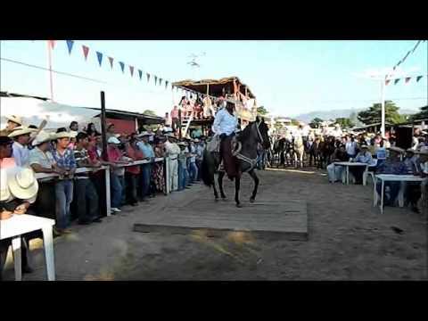 caballos bailadores expo altamirano