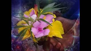 md irfan king khan 8084376417 my phato