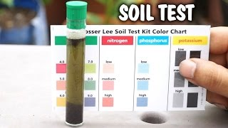 How to test your garden soil for nutrients