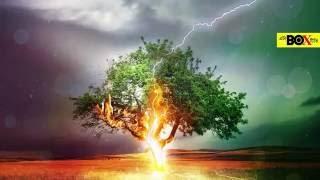বজ্রপাত থেকে বাঁচার উপায় | How to Protect Yourself in a Thunderstorm