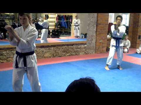 Kata brown belt testing
