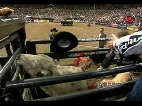 Xxx Mp4 KNOCKED OUT PBR Veteran Ross Coleman Gets Knocked Unconscious In The Chute 3gp Sex