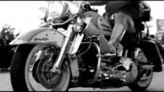 Creedence Clearwater Revival - Bad Moon Rising (vs. O Bando do Velho Rock)