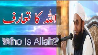 Who Is Allah   Molana Tariq Jameel   Islamic Whatsapp Status