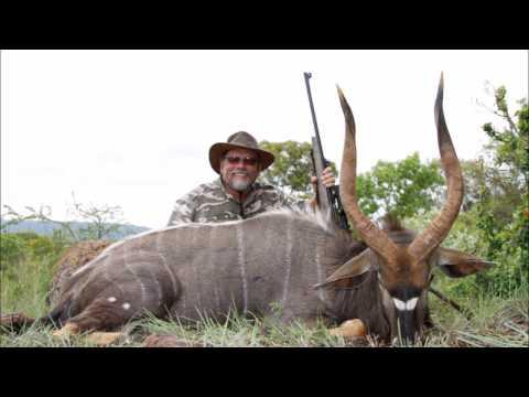 Nyala Hunt 2016