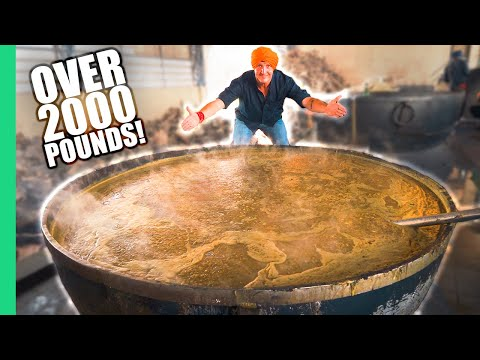 How India Cooks Lunch for 50 000 People for FREE The MIRACLE in Punjab India.