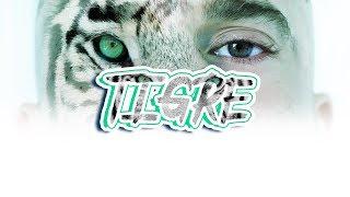 Suprem JDN - Tigre - Motion Maker