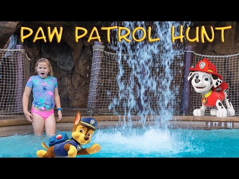 Xxx Mp4 Assistant Searches Resort For Paw Patrol Chase Rubble Toys 3gp Sex