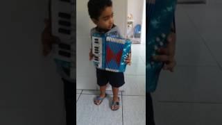 Criança de 2 anos tocando sanfona e cantando (Bernardo)