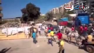 عجل يغلب شارع بأكمله في بورسعيد