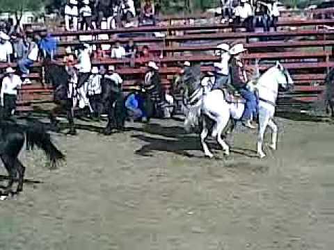 caballos en las fiestas en la estancia de ayllones 12 10 08