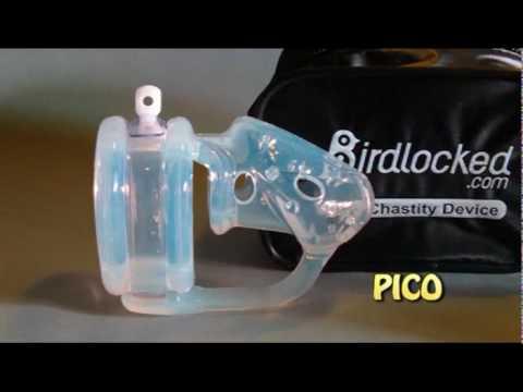 Birdlocked Choice of 4 models