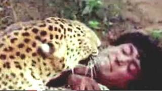 Tarzan fighting with Leopard - Jungle Love Scene - 4/11