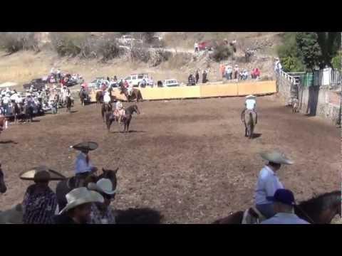 Palma Cuata Zacatecas Coleadero 2013