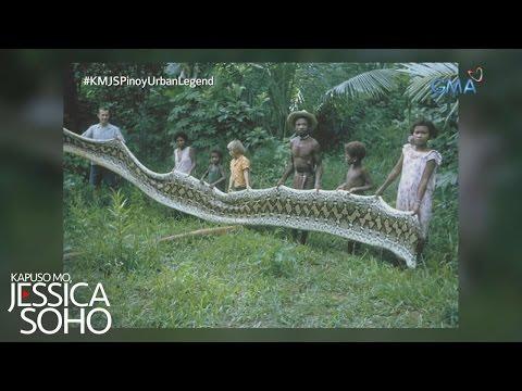 Xxx Mp4 Kapuso Mo Jessica Soho 39 Dambuhalang Sawa 39 Ng Sierra Madre 3gp Sex