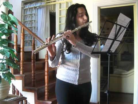 Beethoven Virus Flauta Transversal