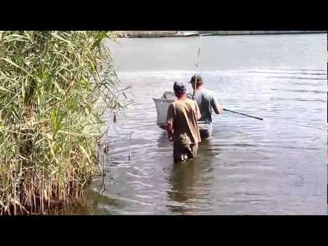 как ловить рыбу на абакане