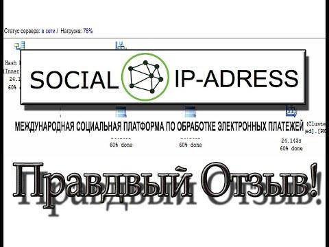 Xxx Mp4 «Social IP Adress» отзыв о социальной платформе Уолтера Кингсли 3gp Sex