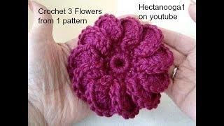 Download DIY how to crochet 3 crochet flowers 3Gp Mp4