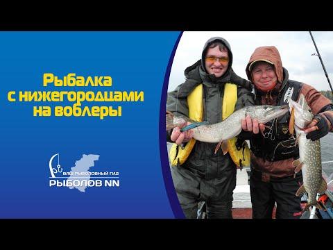 про рыбалку щуки осенью